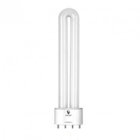 Boite 2 ampoules TL 60